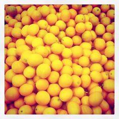 レモンたち