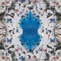 #patterned #scarf #butterflies
