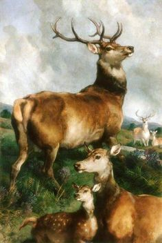 Sir Edwin Henry Landseer Deer of Chillingham Park, Northumberland