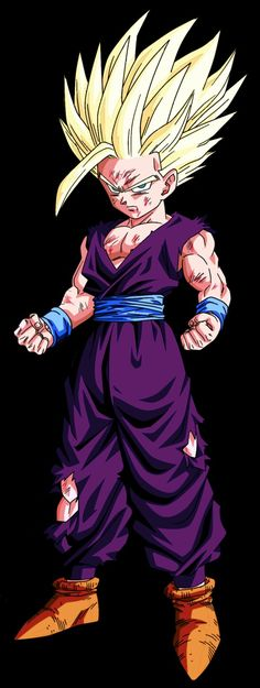 The Fan Tee Body de NI/ÑO Dragon Ball Goku Vegeta Bolas de Dragon Super Saiyan 009