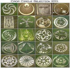 Selection of Crop Circles-------obviously not 2 country bumpkins and a board with a rope.