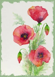 My red watercolour poppies mixed media art in 2019 акваре Watercolor Flowers Tutorial, Watercolor Poppies, Watercolor Drawing, Watercolor Design, Watercolor Paintings, Red Poppies, Watercolor Portraits, Watercolor Landscape, Abstract Paintings