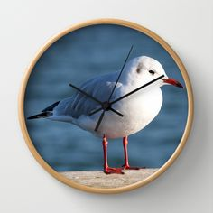 Sea-gull Wall Clock