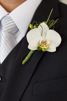 An orchid is a great option for a tropical wedding. Photo   Ashley Jane Photography