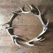 antler wreath - Google Search