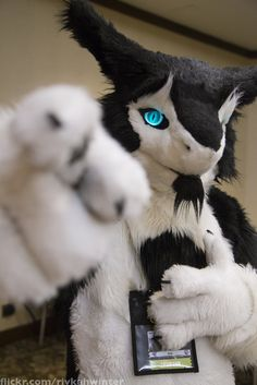 IMG_7018 (Rivkah Winter) Tags: furry pittsburgh convention pointing fursuit rinn anthrocon furryfandom fursuits fursuiters fursuiter fursuiting sergal ac2015 anthrocon2015