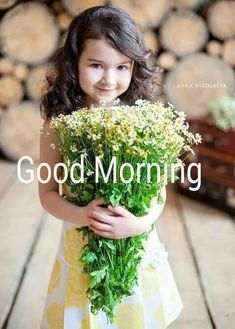 Everybody keeps searching for good morning images with beautiful flowers wish their friends good morning. In today's post, we have brought you a great collection of good morning images with beautiful flowers. Good Morning Gift, Good Morning Roses, Good Morning Picture, Good Morning Messages, Good Night Image, Morning Pictures, Beautiful Morning, Happy Morning, Morning Pics