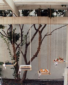 Hanging Garden Of Appertisers - creative & possibly cheaper idea if you are tired of 'food on the table'