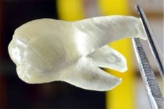 3D printed teeth to keep your mouth free of bacteria http://ow.ly/Tun7S