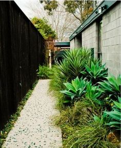 love this landscaping