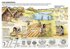 Neolithic | An Infographic