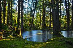 Hadai Gwaii B. -I want to go here so badly Charlotte City, Bowen Island, Vancouver City, Frozen Pond, Haida Gwaii, Tlingit, Archipelago, British Columbia, The Great Outdoors