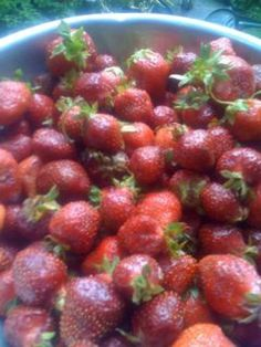 From strawberry jam to how to freeze and dehydrate strawberries, find 10 easy recipes and methods for preserving this wonderful fruit. Fresh Strawberry Recipes, Fruit Recipes, Cooking Recipes, Strawberry Picking, Clean Recipes, Paleo Recipes, Yummy Recipes, Oven Dried Strawberries, Frozen Strawberries