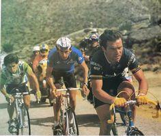 MARINO LEJARRETA Pro Cycling, Bicycle, Legends, Vintage, Elopements, Veil, Science, Bicycles, Cycling