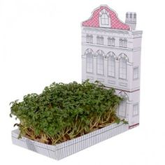 Matchcarden is a tiny house complete with it's own little garden. Don't have room for a big garden? Well grow a mini one and nibble on the cress as it grows! Big Garden, Herb Garden, Garden Paths, Boutique Bio, Ville Rose, Ohh Deer, Garden Gifts, Design Museum, Green Life