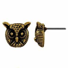 Owl studss.
