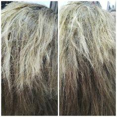 Este pelo se puede recuperar con nuetro tratamiento de queratina alisado brasileño. Mas información en www.aquarelapeluqueros.com  #tratamiento #keratina #pelo #queratina #alisadobrasileño #fashion #estilo #belleza #beauty #pelodañado #alisadokeratina #alisadoqueratina #pelosano #aquarelapeluqueros #tagsforlikes #love #cuidadocapilar #cuidadodelpelo #peloestropeado #pelodañado #peloquemado #pelorecuperado #champú #champúsinsal #hair #instahair #TagsForLikes.com #instafashion #style…