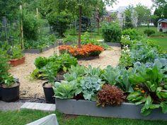 potager garden - Google Search