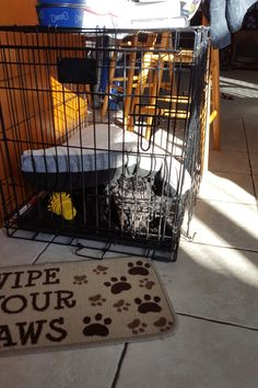 My puppy doesn't care for the bed in his crate http://ift.tt/2rPUOVp