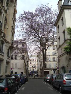 Place_Furstemberg.JPG 2,304×3,072 pixels