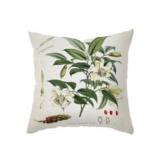 If you adore delicate floral prints, this Botanical Bliss Pillow will be a natural choice. You'll adore its softly designed depiction of a smattering of white floral sprays and blooms, and the gorgeous...  Find the Botanical Bliss Pillow, as seen in the Urban Arboretum Collection at http://dotandbo.com/collections/urban-arboretum?utm_source=pinterest&utm_medium=organic&db_sku=106176