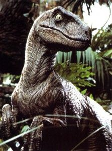 Velociraptor - Some voglions would have similar facial structures to these little badboys xD