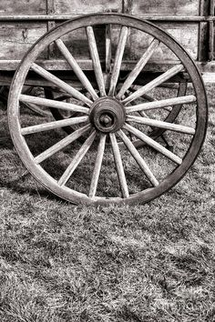 pictures of old wagon wheels | Old Wagon Wheel by Olivier Le Queinec