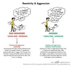 Trad vs Mod training: aggression by lili.chin, via Flickr