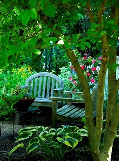 Ash Tree Cottage: Decorating the Cottage Garden