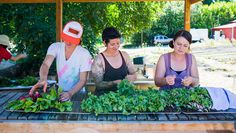 Organic Life Magazine - by Audra Mulkern Farm-to-table gets a serious dose of girl power.
