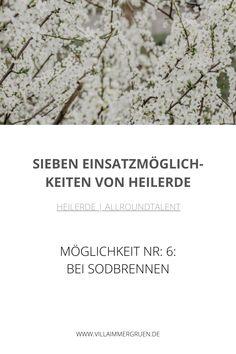 Heilerde |Allroundtalent - Möglichkeit Nr. 6: Bei Sodbrennen How To Dry Basil, Shampoo, Herbs, Oil Control, Heart Burn, Organic Beauty, Herb, Medicinal Plants