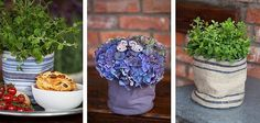 It's a self watering, fabric, flower pot found in Norway. (the lining holds 5 days of water) Verdensnyhet – «grow-in Flower Pots, Flowers, Self Watering, Norway, Gardens, Fruit, Fabric, Projects, Things To Sell
