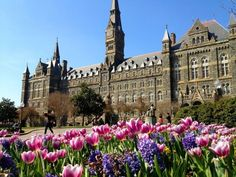 The best decision I have ever made in my life was attending this unbelievably breathtaking university... georgetown <3