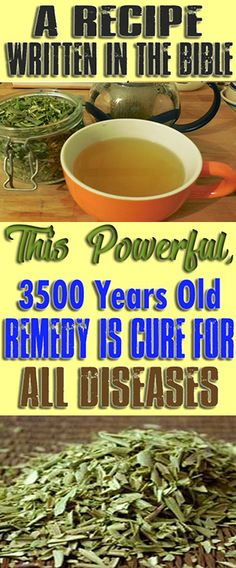 A Recipe Written in the Bible: This powerful, 3500 year old Remedy is a Cure for all Diseases! #health #fitness #weightloss #fat #diy #drink #smoothie #weightloss #burnfat #diet #naturalremedies th #weightloss #burnfat #diet #naturalremedies #weightloss
