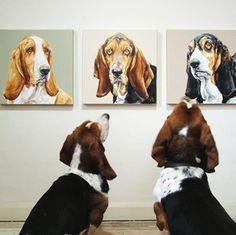 "Bassett hounds admiring ""family portraits"":-)"