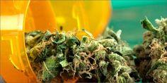 How Marijuana Can Save Us From Painkiller & Heroin Addiction