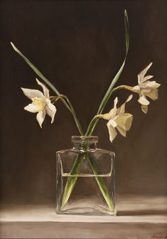 Houseplants for Better Sleep Daffodils By Sarah Lamb Still Life Flowers, Still Life Fruit, Floral Drawing, Floral Watercolor, Sarah Lamb, Classic Paintings, Still Life Photography, Daffodils, Flower Art