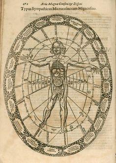 Athanasius Kircher SJ – 'Musurgia