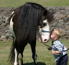 horse and kid - cheval et enfant