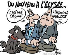 Labrador Elysee Hollande