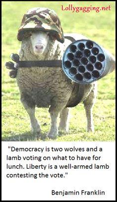 A real Benjamin Franklin quote made into a funny meme. #guncontrolsigns #guncontrolmemes #secondamendment