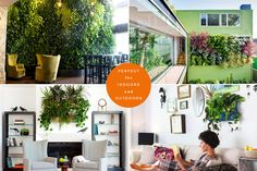 Living wall inspiration for indoors or outdoors.  The wall containers are made from recycled plastic bottles and it appears they protect walls from rot.  You can keep adding pockets and build up a full wall of greens.  Love!
