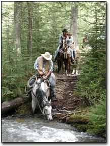 Ridin' the back country ~ an exhilarating experience, wherever it may be.