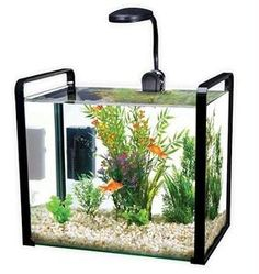 136 best usa aquarium equipment images aquarium aquarium fish