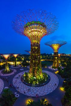 Gardens at the Bay, Singapore - These outstanding botanical gardens light up in the night in Singapore.
