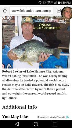 Fishing Photos, Lake Havasu City, World Records, Arizona