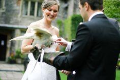 Special ring courier @yhahartingtonhall  #Hartingtonhall #wedding #weddingideas #Leeds #Sheffield #weddingparty #celebration #bride #groom #bridesmaids #happy #love #forever #weddingdress #weddinggown #ceremony #marriage #romance #weddingday #flowers #celebrate #instawed #instawedding #vsco #vscocam