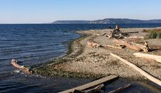 Visitors take in the Puget Sound view from drift-log perches at Meadowdale Beach County Park. Whidbey Island is in the background. Caitlin Moran, Whidbey Island, County Park, Take A Break, Olympia, Happy Hour, Hiking, Beach, Water