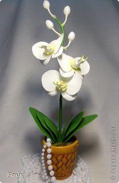 Орхидея из фоамирана: мастер класс с выкройками, шаблонами и фото