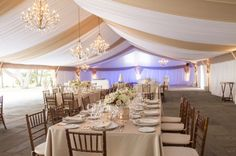 love chandeliers (or some type of over head lighting) and white draping fabrics